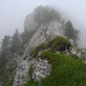 Arcalod (Bauges, 73) : crête nord, rocailleuse - AU BOUT DES PIEDS