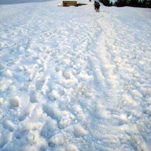 Annecîmes, Maxirace : arrivée au sommet du Semnoz (Crêt de Chatillon) - AU BOUT DES PIEDS