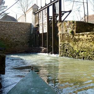 barrage du Moulin de Court (Meilleray) - AU BOUT DES PIEDS