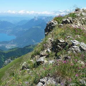 Sambuy (Bauges, 73) : le lac d'Annecy - AU BOUT DES PIEDS