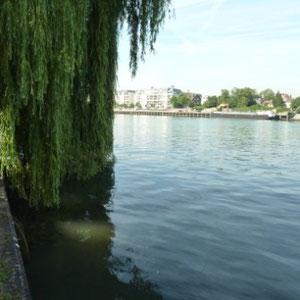 Ceinture verte d'Ile de France : la Seine à Draveil - Au Bout des Pieds