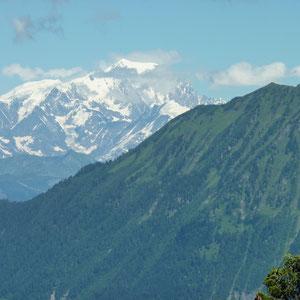 Chaurionde (Bauges, 73) : Dent de Cons et Mont Blanc - AU BOUT DES PIEDS