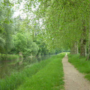 Canal d'Orléans :  - Au Bout des Pieds