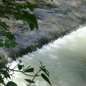 Grand-Morin : Moulin de Nevers, Champgoulin - Au Bout des Pieds