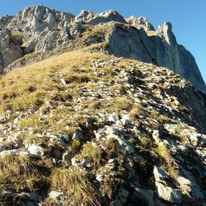 Pécloz (Bauges, 73) : montée du Pécloz, du collet - AU BOUT DES PIEDS