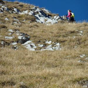 Pécloz (Bauges, 73) : montée du Pécloz - AU BOUT DES PIEDS