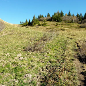 Pécloz (Bauges, 73) : en arrivant au dessus de l'Isère - AU BOUT DES PIEDS
