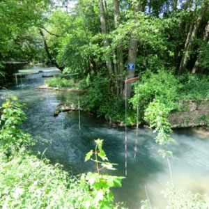 Grand-Morin : Saint Rémy de la Vanne - Au Bout des Pieds