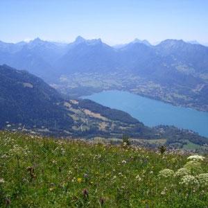 L'Aulp Riant dessus : le lac et les Bauges - AU BOUT DES PIEDS