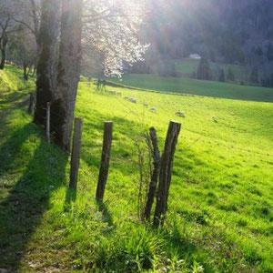 Annecîmes, Maxirace : après Mont-Derrière - AU BOUT DES PIEDS