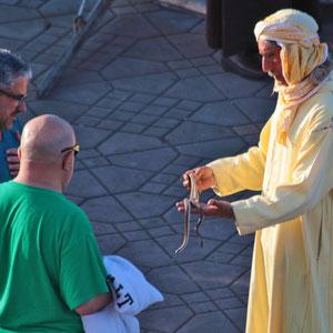 Abendliches Treiben auf dem Gauklerplatz in Marrakesch. - Ein Schlangenbeschwörer.