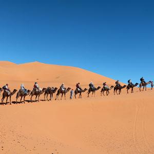 Von Merzouga am Rande der Wüste Sahara geht es mit Kamelen hinein in die Wüste zu unserem Camp.