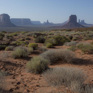 """Giants"" 