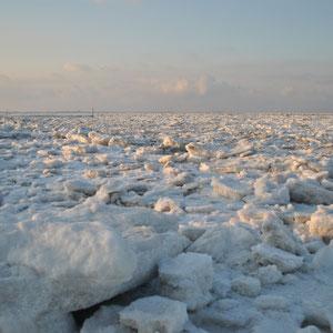 Foto des Monats: Februar - Blick auf die Nordsee