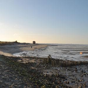Foto des Monats: März 2012 - Hooksieler Strand bei Ebbe