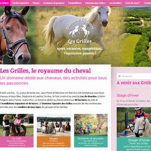 Les Grilles, domaine équestre à Saint-Fargeau dans l'Yonne