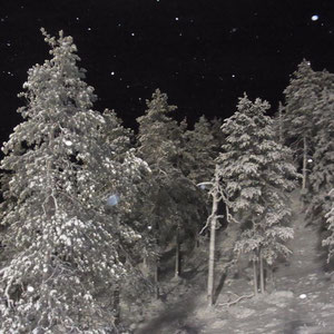 schöne Landschaft bei eisiger Kälte