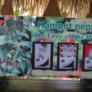 ein letzter Stop in Kambodscha zum Pfeffer kaufen in Kampot