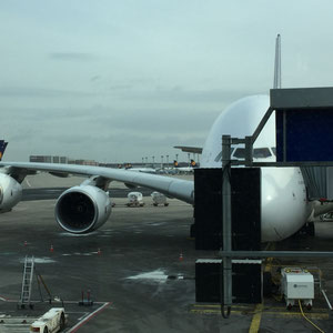 unsere Maschine - Airbus A 380