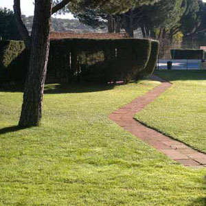 Mantenimiento de jardín en Torrelodones