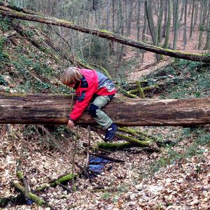 Ein mutiger Indianer auf der Suche nach dem kostbaren Schatz im Schwerter Wald