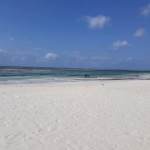 Strand, Diani Beach, Südküste Kenia, Afrika