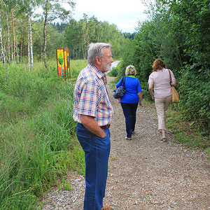 Spaziergang durch das Arracher Moor