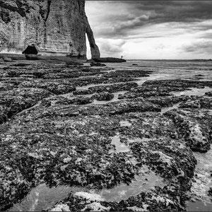 Normandie # M06