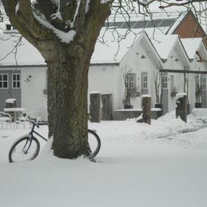 Les Chambres du Vivier - Sous la neige