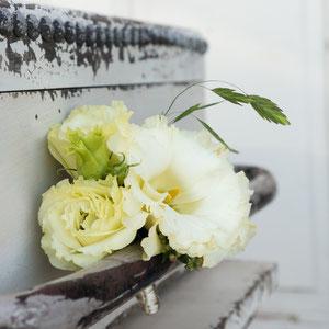 Hochzeit Springflor