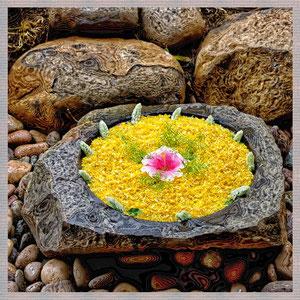 · motiv-untersetzer · set 16.1 · motiv: mauritius_yellow_stone · 2010-10-04-001 · yak © 2015 RK