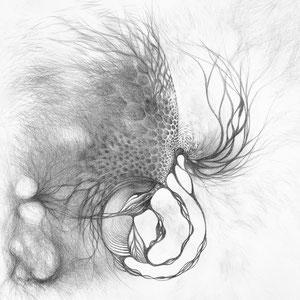 Free process - « Ce qui vient comme ça vient / What comes as it comes » - Crayon papier sur toile - 80 x 80 cm —  © Franck Chastanier 2019 - Disponible