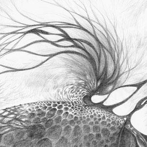 Free process - « Ce qui vient comme ça vient / What comes as it comes » - Crayon papier sur toile - 80 x 80 cm —  © Franck Chastanier 2019 - Prix : 800 Euros