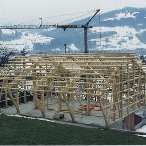 Stall- und Hallenbau auf Fundament Vollholzbauweise mit Dachfirst Dani Vogt D. Vogt Holzbau GmbH CH 8855 Wangen SZ