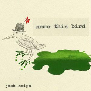 Jack Snipe - Name this bird