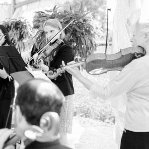 Musik für Hochzeit - Streichquartett