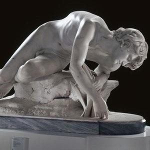Narcisse et son reflet