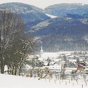 Blick auf Aesch, Baselbiet