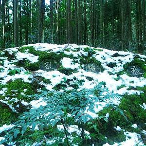 古道を歩いて熊野三山の神々が集ったという円座石(わろうだいし)まで