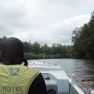 ガボン|オゴエ川をボートで遡上
