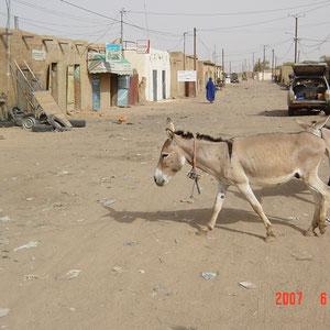 モーリタニア|内陸部の村、外気温40度超