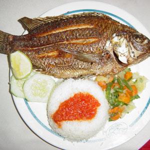 タンザニア|ビクトリア湖のティラピア料理