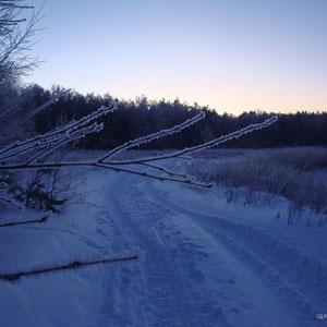 зима в Бояркино