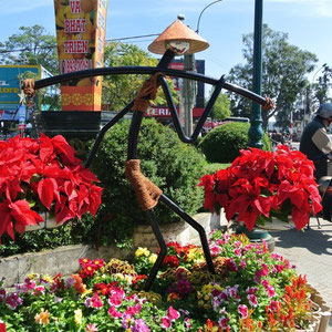 La fete des fleurs