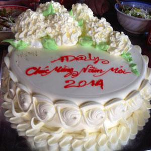 Le gâteau AD@lY pour la nouvelle Année