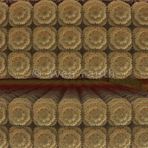 Sven Fauth - 3D-Fraktale - Mandelbulbs