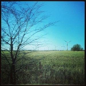 Auch das Oldenburger Umland ist schön: Wiesen und Windräder in Ostfriesland