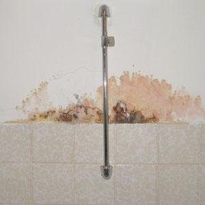 Schimmelpilze an einer Badezimmerwand aufgrund Spritzwasser