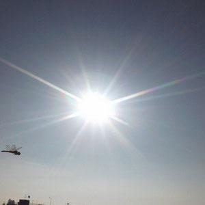 東の空に朝陽とトンボが