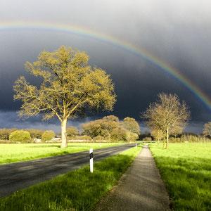Ein toller Regenbogen erstreckt sich über die Landstraße zwischen Büchen und Müssen.